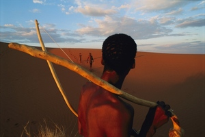 Ancient-genome studies grapple with Africa's past